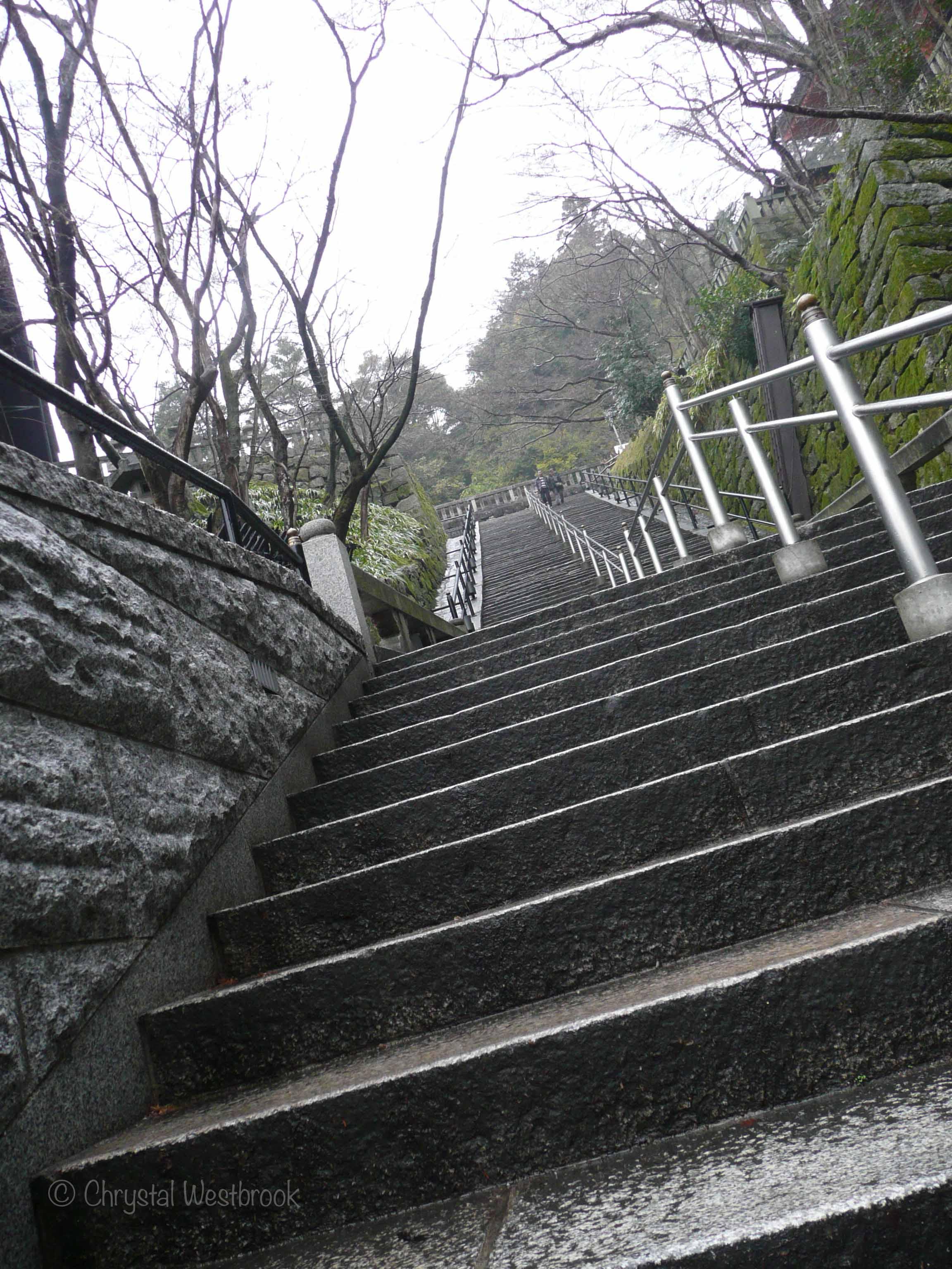 [IMAGE] Staircase in a Kyoto garden